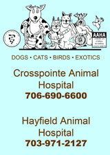 Crosspointe Animal Hospital, Fairfax Station, Virginia